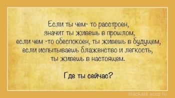 109492294_zhizn