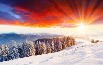 2560x1600_wonderful-winter-scenery