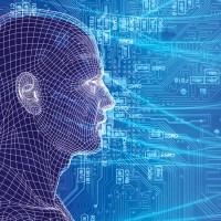 psychology_and_sociology_digital_head