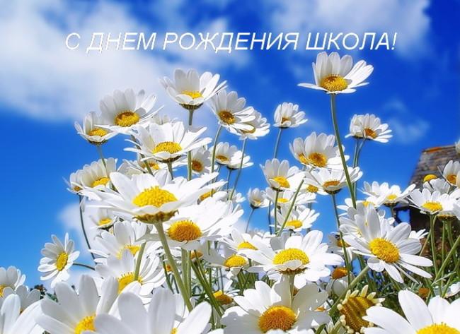 1110_69073_73d1d083_XL