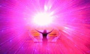 pink_light-743x450