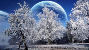 derevya_iney_planeta_zemlya_nebo_zvezdy_park_30522_1366x768