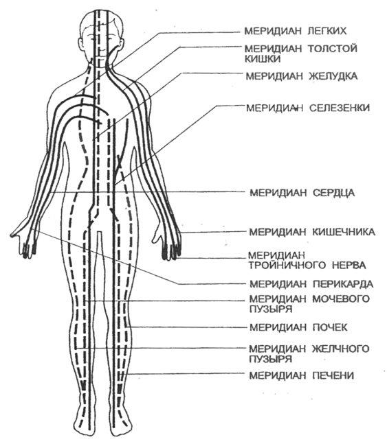 Кристаллическая сеть фасций